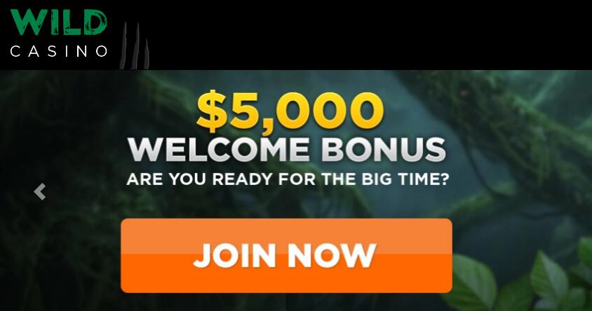 Wild Casino Libreng Account