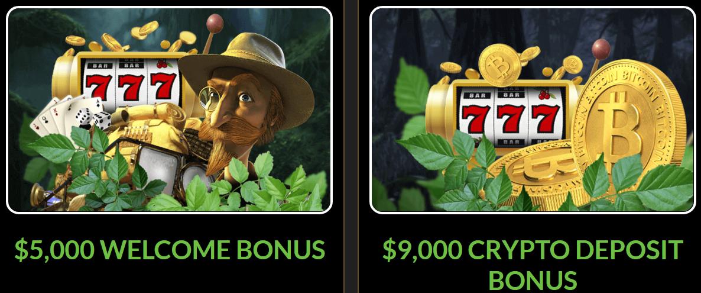 Wild Casino Maligayang pagdating Bonus