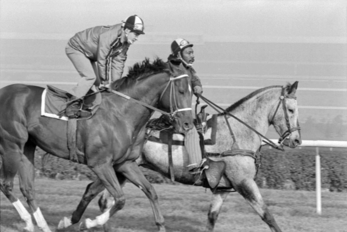Secretariat training with pony
